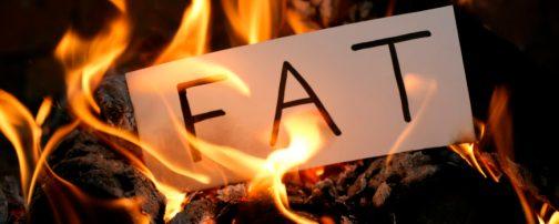 fatburning-870x350.jpg