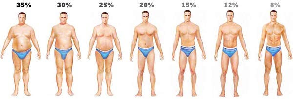 body-fat-levels-men1