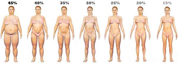 body-fat-levels-women21