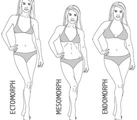 Female Ectomorph Principles | BonyBabe To WonderWoman